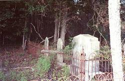 Old Goethe Cemetery