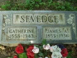 Catherine Ann <I>Oakes</I> Sevedge