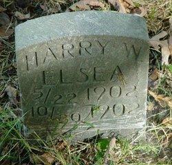 Harry W. Elsea
