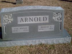 Robert E Arnold