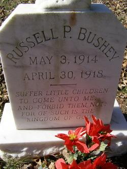 Russell P Bushey