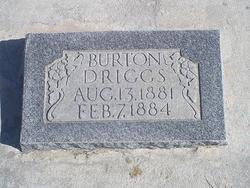 Burton Ross Driggs