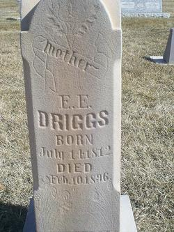 Eliza Elizabeth <I>White</I> Driggs