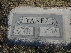 Senobia Yanez