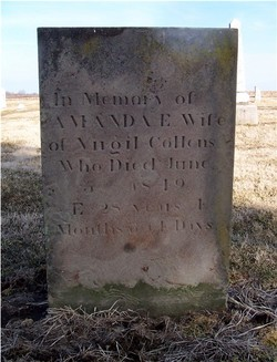 Amanda E. <I>Wheeler</I> Collins