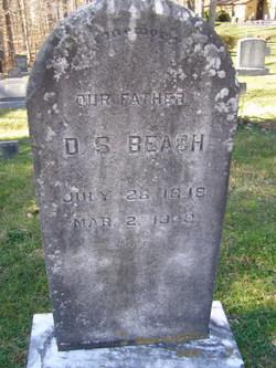 David Solomon Beach