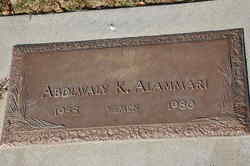 Abdlwaly K. Alammari