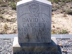 David Smith Cauley