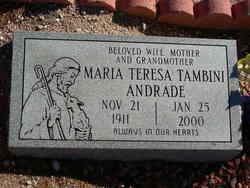 Maria Teresa Tambini Andrade