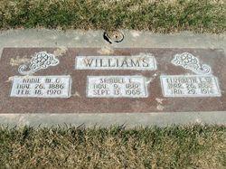 Annie Margaret <I>Gillen</I> Williams
