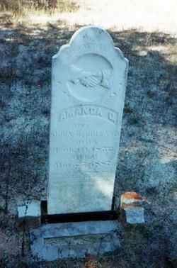 Amanda Owens <I>Harrison</I> Holland