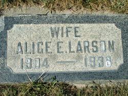 Alice Elizabeth <I>Strong</I> Larson