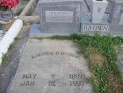 Andrew B. Brown