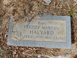 Freddie Marcus Halyard