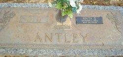 Anita Freda <I>Hines</I> Antley