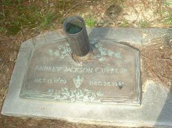 Andrew Jackson Curry, Jr