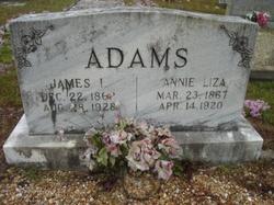 Annie Liza <I>McElwaney</I> Adams