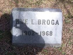 Nye L Broga