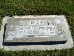 Orson Theodore Jenson