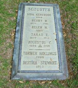 Henry Miles Schuster