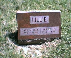 Nimrod Apollo Lillie