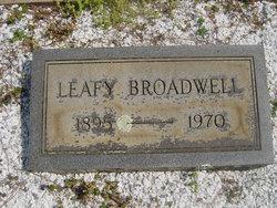 Leafy C Broadwell