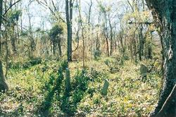 Pleasant Garden Cemetery