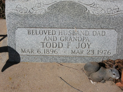 Todd Floyd Joy