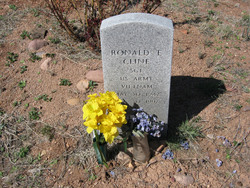 Ronald E. Cline