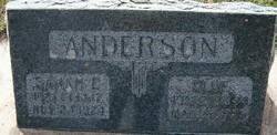Sarah Eliza <I>Olsson</I> Anderson