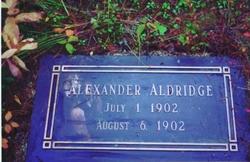 Alexander Aldridge
