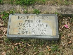 Essie <I>Loner</I> Bowie
