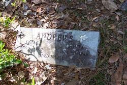 Don E. Andrews
