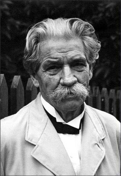 Image result for images Albert Schweitzer