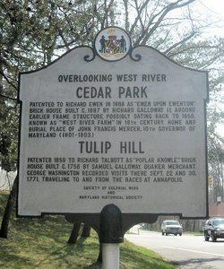 Tulip Hill Estate