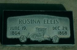 Rosina Maria Ellis