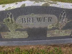 James Brown Brewer