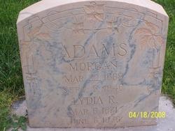 Lydia Ann <I>Reber</I> Adams
