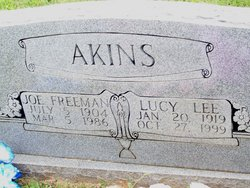 Lucy Lee Akins