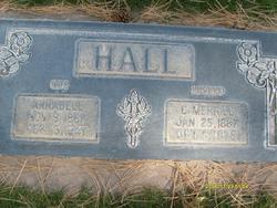 Annabell <I>DeMille</I> Hall