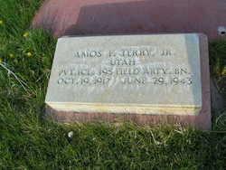 Amos Franklin Terry, Jr