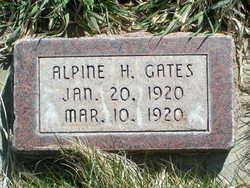 Alpine Hall Gates