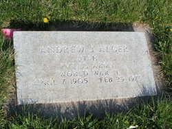 Andrew J Alger