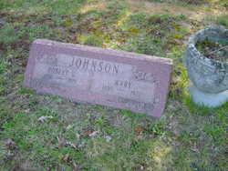 Mary <I>Hodgens</I> Johnson