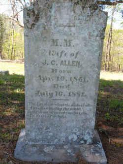 M M Allen