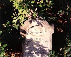 Richard R Lewis