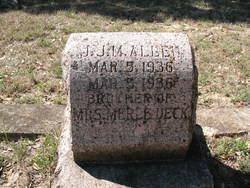J. J. M. Allen