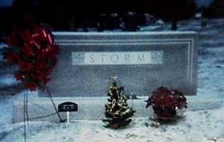 Lillian Aileen <I>Partin</I> Storm