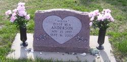 Elyse Anderson