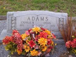 """Charles William """"Charlie"""" Adams"""